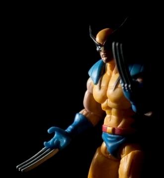 Standard Wolverine shot: check.
