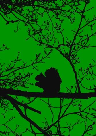 dsc_0044-1-tracelight-green-black