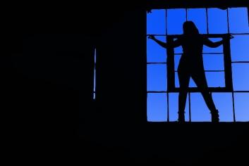 bathroom_silhouette_by_lobomalo-d4ixshp6