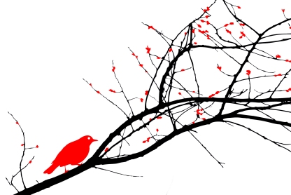 bird-trace-redwhite - Copy