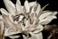 Wedding Sunday1-138